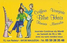 Carte visite Blue Hair scannee